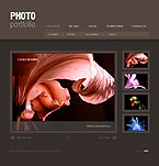 Free Dynamic Flash Gallery Template